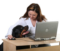 The Future of Business Optimization: A Person, A Dog, and A Computer